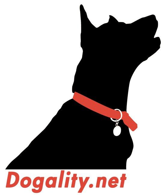 logo_dogality